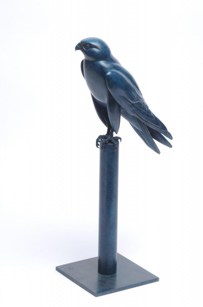 Horus Falcon by Martin Hayward-Harris