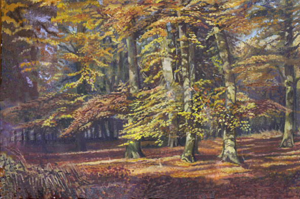 "Example of commisioned work ""Autumn Beechwoods Sywncombe"" Oil colour 36x24 inches, 2009."