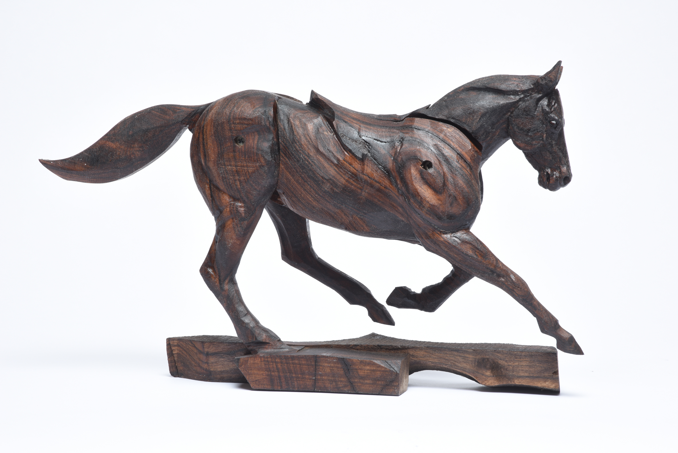 Galloping Race Horse